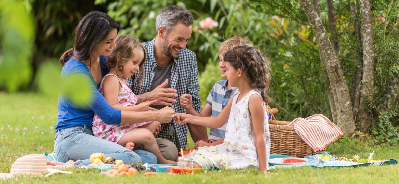 Cinco pasos para un picnic ideal
