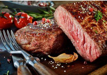 Vamos de camping y comamos carne asada